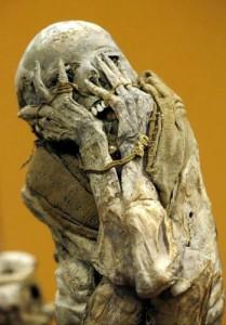 тайны происхождения человека