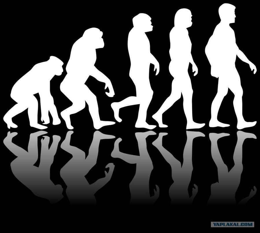 Крах теории эволюции
