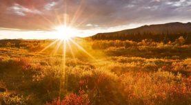 Всем распоряжается только Аллах (часть 1)