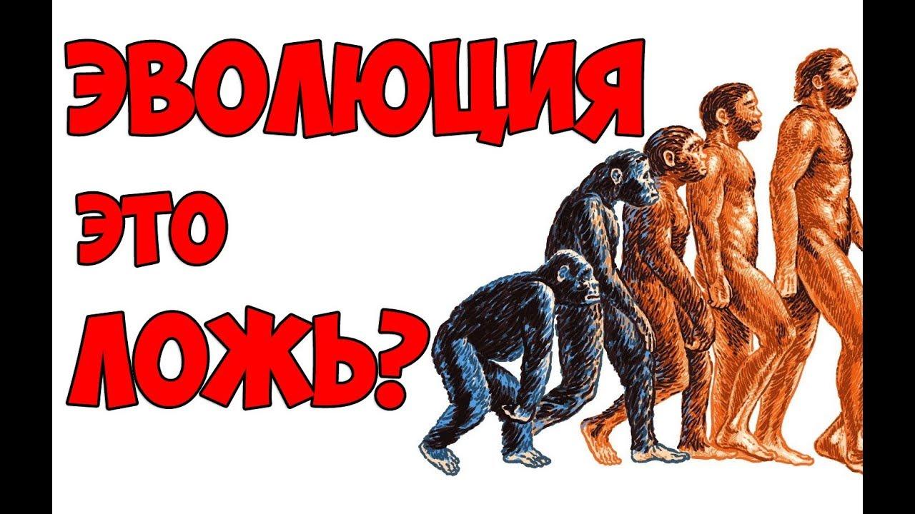 эволюции